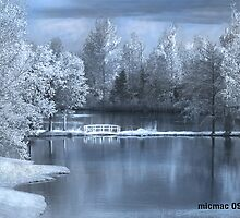 Blue Garden by Gisele Bedard