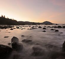 And The Tide Rushes In by Randall Scholten