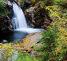 Bingham Falls, Stowe, Vermont by AaronLeclerc