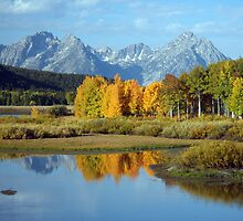 OxBow Bend by noffi