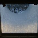 Sunrise through Icy Window by AlteriorMotives