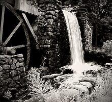Water Wheel by VinnyS