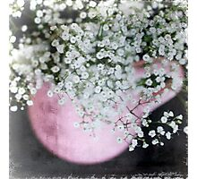 P I N K . P O T Photographic Print