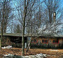 Maple Time Vermont by Deborah  Benoit