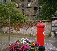 THE QUEENS POST BOX IN SCOTLAND by DIANEPEAREN