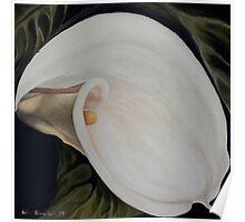 "Calla Lily ""Black Swan"" Poster"