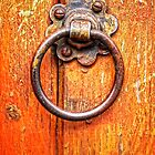 Wood Knocker by Simon Duckworth