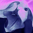Orchid Stamen by ciararachel