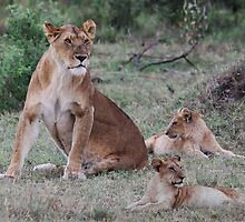 PROUD MOTHER - KENYA by Michael Sheridan