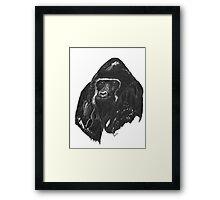 black gorilla  Framed Print