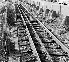 Volks Railway by stewtm
