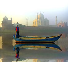 Morning Mist by Mukesh Srivastava