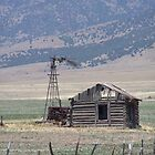 Idaho Homestead by Kim Hajdu