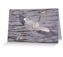 Lift off... Greeting Card