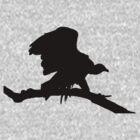 Vulture by Glenn Browning