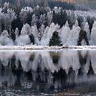 beautiful Sweden by Oehmig Birgit
