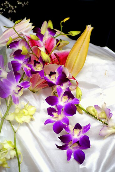 Satin Orchid by Kristina K