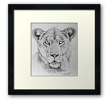 Lioness Head Framed Print