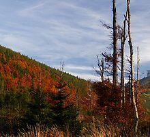 Autumn mountains by zelva