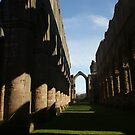 Fountains Abbey by Mark Thompson
