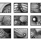 Everyone Loves a Slinky by dsa157