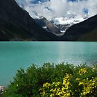 Lake Louise - 4 by Barbara Burkhardt