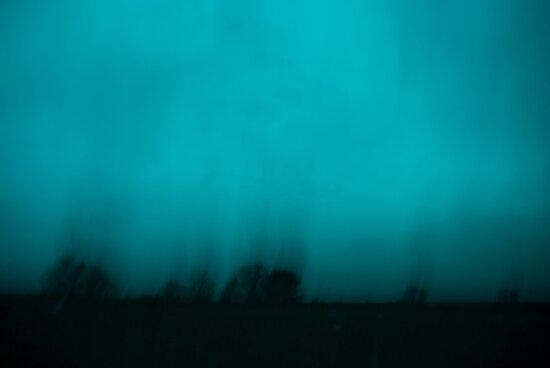 Night Falls by Jenny Ryan