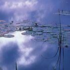 Reflections by Bill Spengler