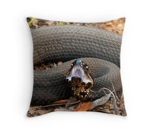 Cottonmouth Moccasin Posed For Strike II Throw Pillow