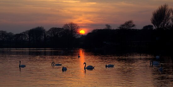 Sunset Lake by David O'Riordan