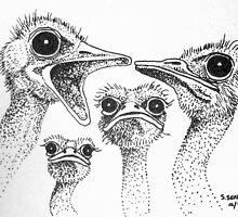 Ostrich Gossip by sally seabright