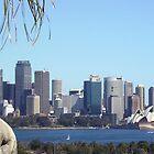 Goats in Sydney 2 by LameyWorx