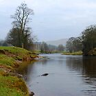 River Wharfe by Annette Brown