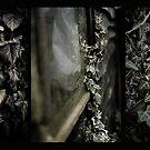 Dark Triptych by Rose Atkinson