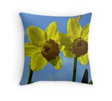 Two Sunshines in the sky Throw Pillow