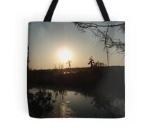 Sunset with Coot, March, 2009 Tote Bag