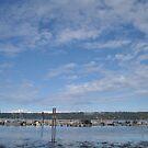 Fanny Bay Landscape 2 by TheKoopaBros