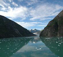 Glacier Land 2 by Lynn  Cropp