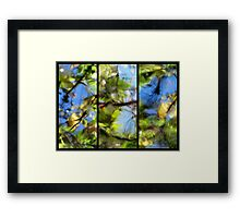 Another Day Meanders By Framed Print