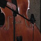 Double bass by jimthedrum