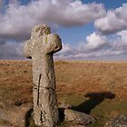 Crosses on Dartmoor by Rob Parsons