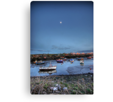 Moonlight over Paddys Canvas Print