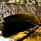 Tanaya Creek Bridge by NancyC
