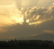 Tuscan Sunrays by jumpingjiminy