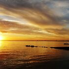 Golden Sunset at Brighton Beach by Roz McQuillan