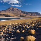 Lagunas Miiques y Miscanti - Chile by Lisa Germany