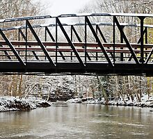The Bridge in Rocky River Metroparks  by Rachel Counts