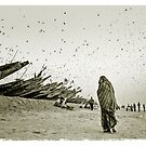 Locusts plague, Mauritania #6 by Mauricio Abreu
