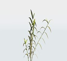 Bamboo Planat by dmark3