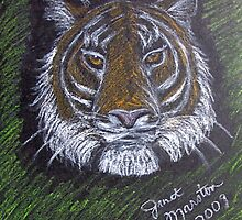 Lady Tiger by janetmarston